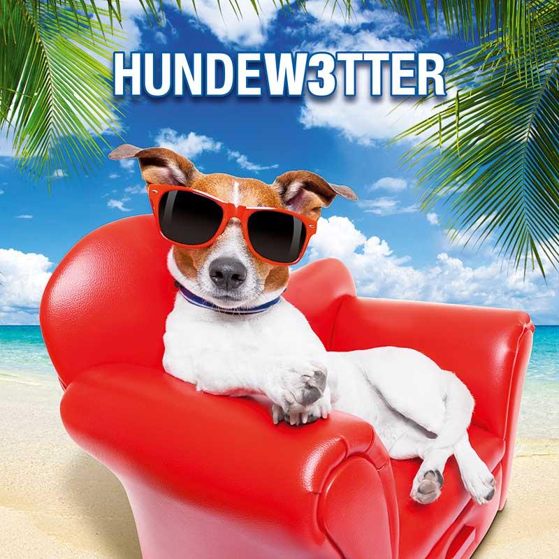 Hundewetter - Unsere aktuellen Aktionen im April 2017